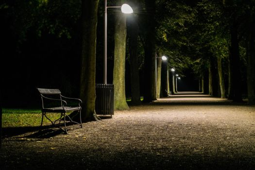 Path at Night Park by martineriksen