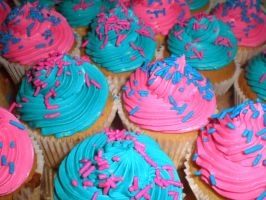 Pink and Blue Vanilla Cupcakes by amysalmon