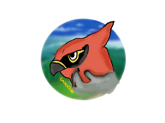 Talonflame headshot by Galaxziie