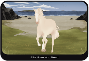BTs Perfect Shot by Lone-Onyx-Stardust