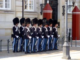 Changing of the Guard - Denmark 1 by wanderingmage