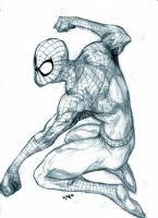 Spidey by jets