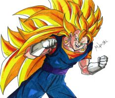 Vegetto SSJ3 by MikeES