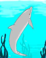 Dolphin of MSPaint Proportions by kelly42fox
