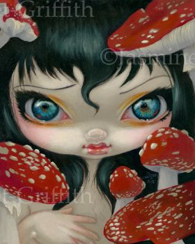 Poisonous Beauties VI: Fly Agaric by jasminetoad
