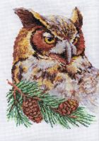 owl on the fir-tree by FeatheredDiva
