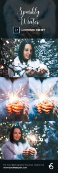 Sparkly Winter FREE Lightroom Preset by Evey90