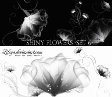 Shiny Flowers set 6 by Lileya