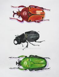 Botanical Board - Three Scarabs by Emi-Gemini