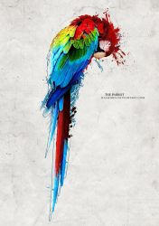 The parrot by Rachides