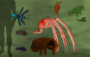 Orboscorpions diversity by Dragonthunders