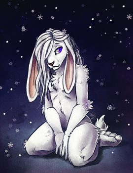 Snow Bunbun - Sketch by TasDraws