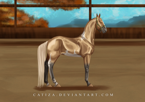 EquiBreak: The best foal by Catiza