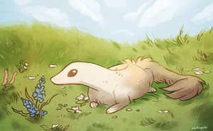 twwm - Wildflower field by owlapin