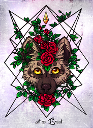 Red roses by TS-cat