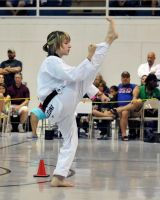 Shannon Taekwondo Gold Forms by Kicks02