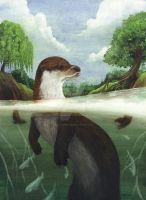 Otter by saraquarelle