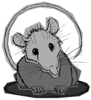 Round Ratty by ltread