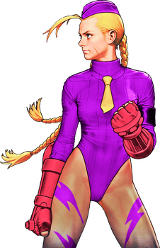 Street Fighter Killer Bee Cammy color 6 by WhiteAngel50000