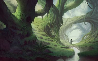 deep forest by yohan-haash