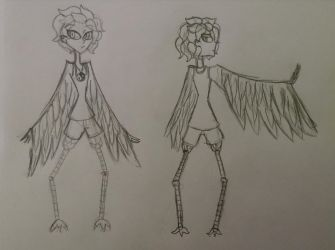 Harpy concepts by nayelidanahe