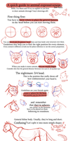 Tips and tricks for feline expressions by VanyCat