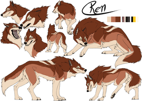 Pose-Set: Ren by CXCR