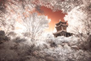 Temple amongst the Trees - Infrared by SteveCampbell