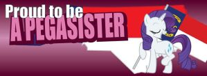 NCB Facebook Cover Photos - Pegasister, Rarity by elvisshow