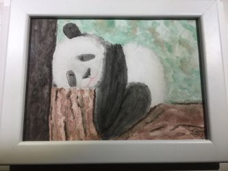 Panda Pic For Dad by thehobbypanda