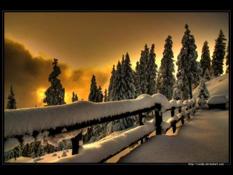 Winter - HDR by vxside
