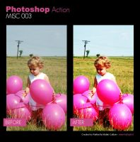 Photoshop Action - Misc 003 by primaluce