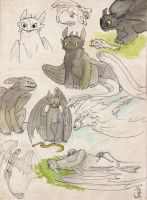 Toothless sketches by janey-jane