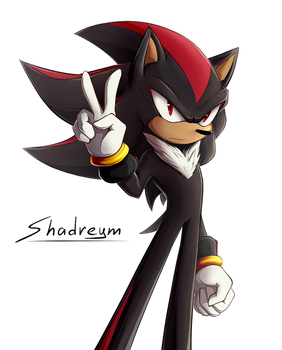 Shadow Project by Shadreym