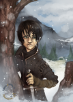A Song of Ice and Fire: Arya + Needle in the Snow by karniz