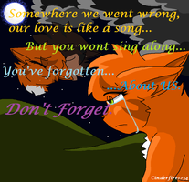 Squirrelflight-Don't Forget by Cinderfire1234