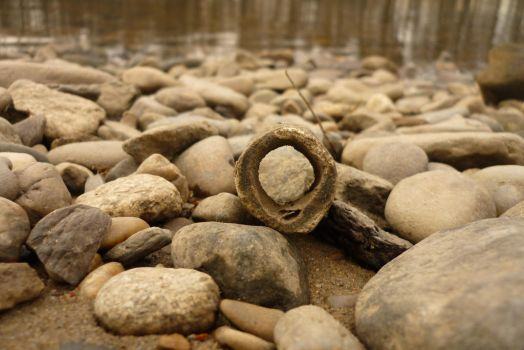 Bones and Stones by Cathie-hope