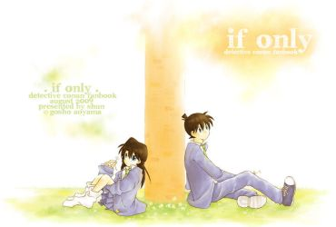 DC : If only... by kim57n