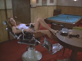 The Duke of Hazzard - Catherine Bach by Dreamerforever2004