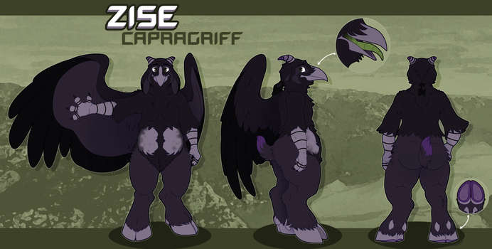 Zise Reference 2017 by TheFluffehGryphon