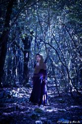 In the forest of dream by MarcoSPF