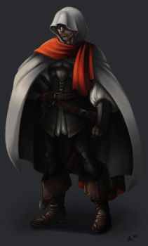 Assassins inspired concept by DigiAvalon