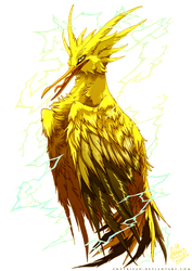 PKM: Zapdos Used Thunder Shock! by Empyrisan