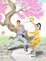 Cover art for Choice of the Kung Fu Master by racerxmachina