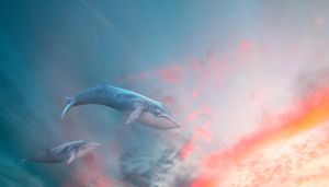 whales in the sky by neeeer