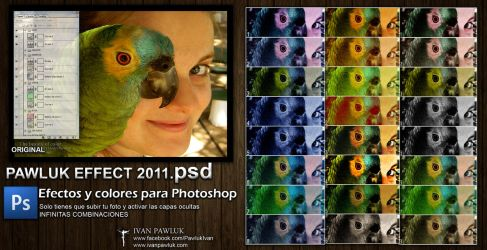 PAWLUK EFFECT 2011  psd by ipawluk