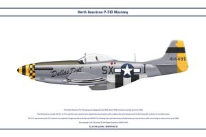 Mustang USAAF 352nd FS 1 by WS-Clave