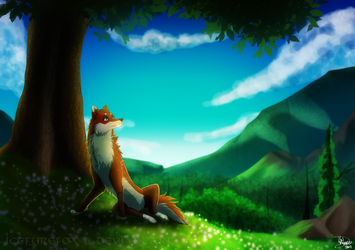 A Moment of Peace by icefyrefox