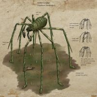 Speculative K:SI bullshit: Mother Longlegs by Ramul
