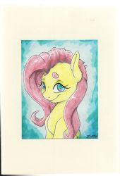 Fluttershy - gift card by Dilarus